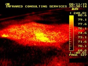 Reveal problems with a thermal imaging survey.